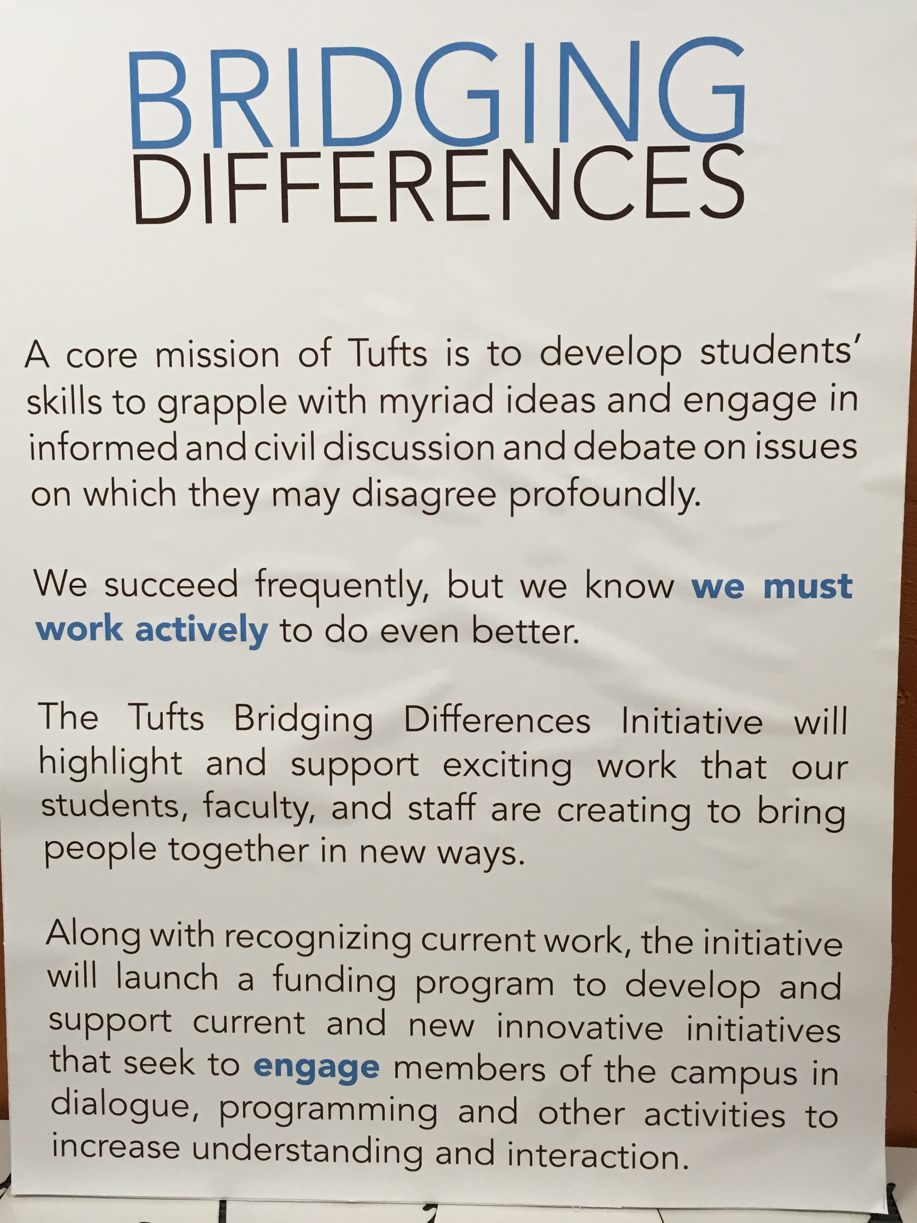 bridging differences poster