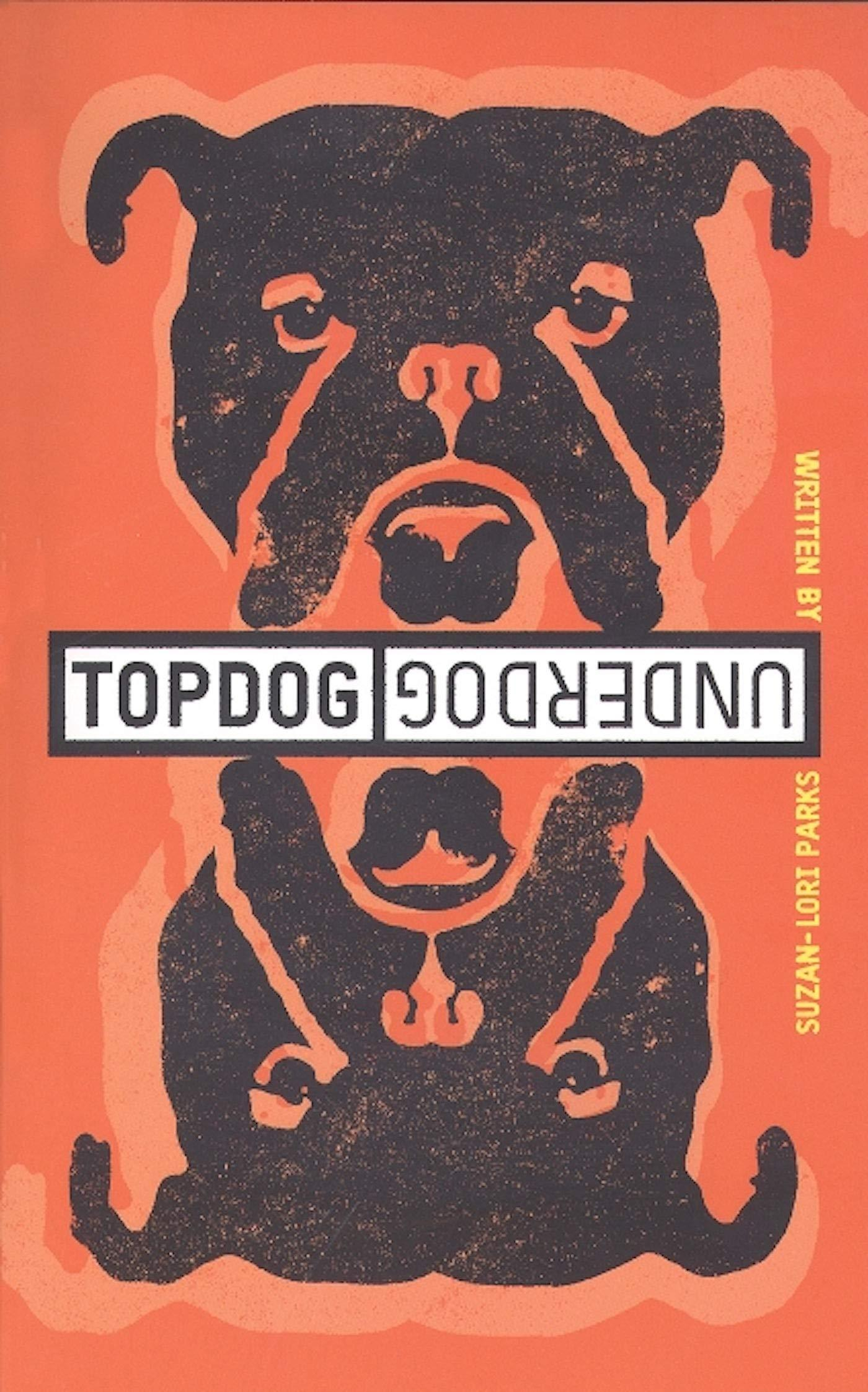 Book cover for Topdog Underdog