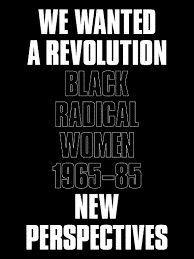 Book cover for We Wanted a Revolution